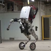 Boston-dynamics-robot.jpeg